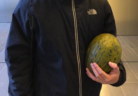 melon-embarazo